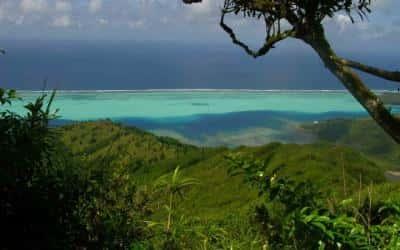 Huahine - Tetumu Randonnées