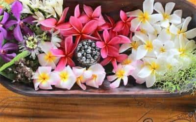 Tahiti - Rau Hotu Tahiti